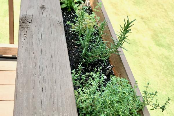DIY Herb Garden Planter Box