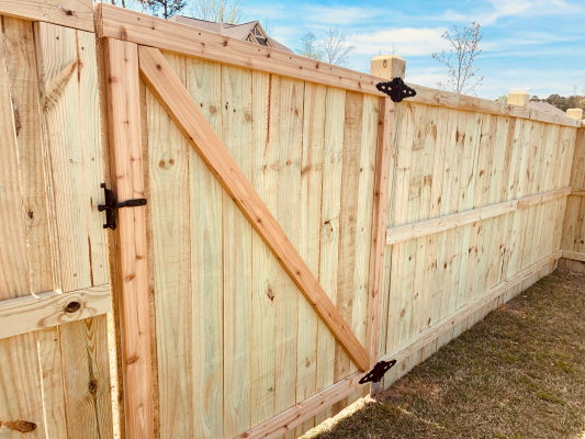 Backyard Privacy Fence