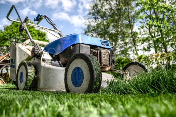 Lawn Care Tips and Schedule